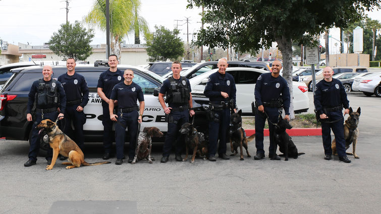 police department officers pose for picture with their k9s in-front of squad car