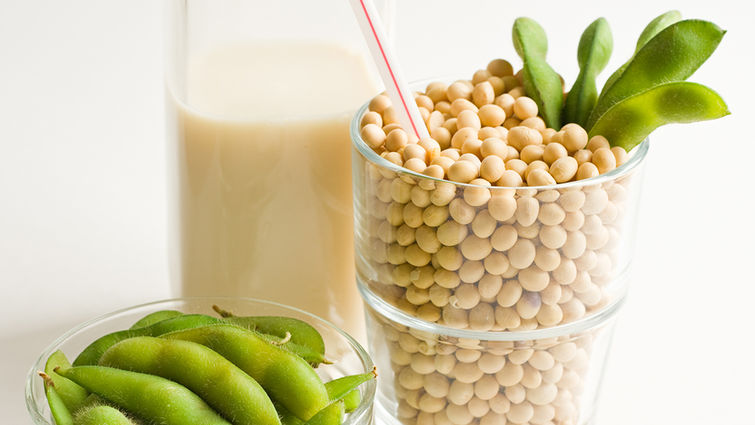 Loma Linda University study will find out if a fermented soybean product reduces the risk of heart disease.