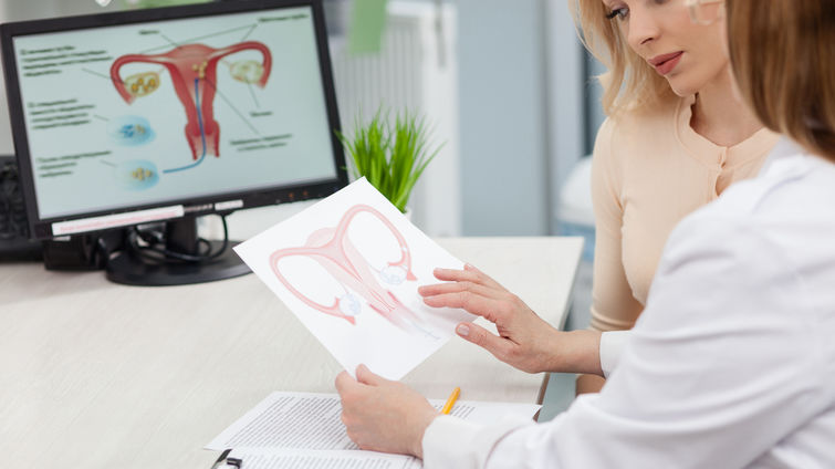 female doctor showing blond woman diagram of uterus