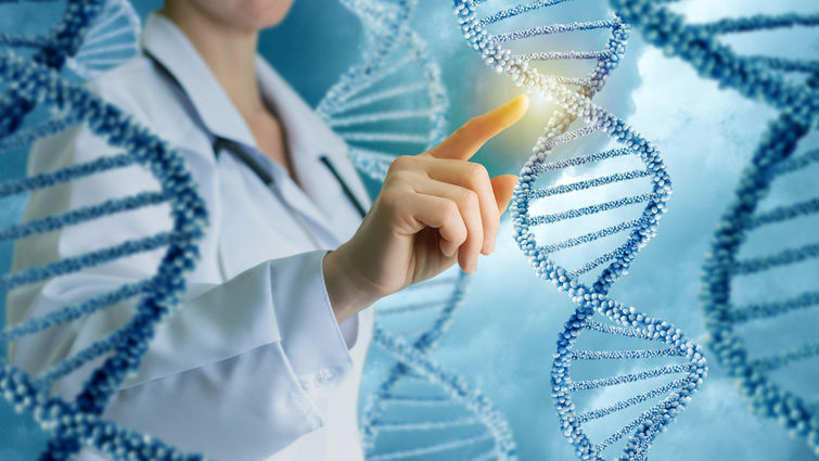 Researcher touches a strand of DNA