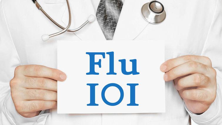 Flu 101
