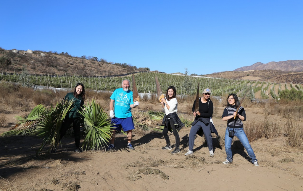 Loma Linda University School of Pharmacy students' mission trip in Uruapan, Baja California, Mexico