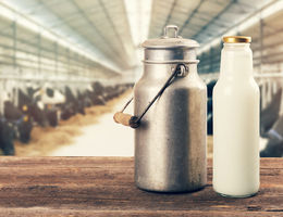 New study associates intake of dairy milk with greater risk of breast cancer