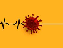 Heart beats stop at viral particle