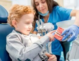 5 myths of dental trauma