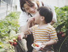 mother feeding son a strawberry