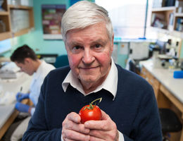 Throwing tomatoes at autoimmune diseases