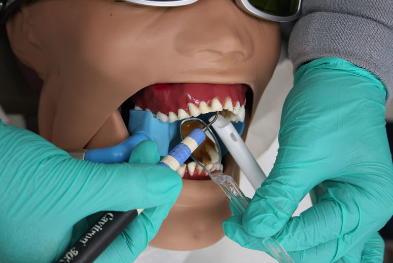 Close-up of tools used during dental procedures in study